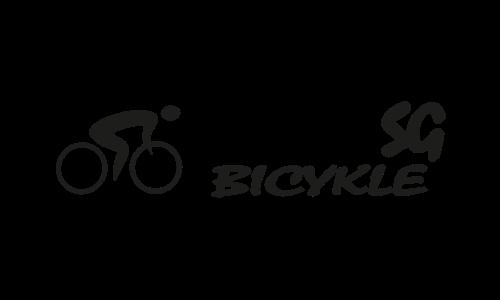 logo SVS partneri – SG